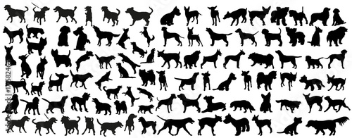 Photo vector, isolated black silhouette of a dog, collection