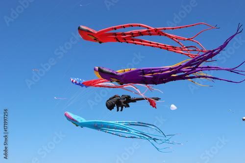 Fotomural Kites in the Sky