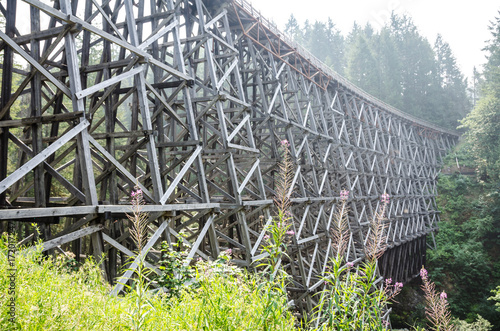 Photo Kinsol Trestle support bracing and woodwork