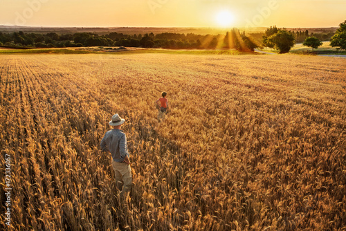 A farmer and his son standing in their wheat field at sunset