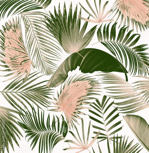 Fototapeta wymieszać liść drzewa palmowego tło