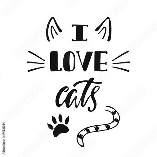 Uwielbiam koty. Odręcznie inspirująca cytat o kocie.