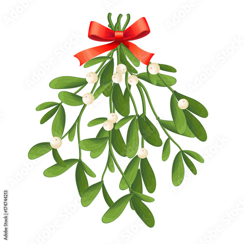 Fotografia Branch of mistletoe with berries and red bow