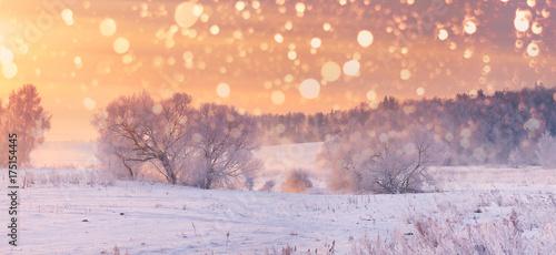 Fotografie, Tablou Christmas  background