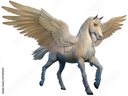Carta da parati Pegasus