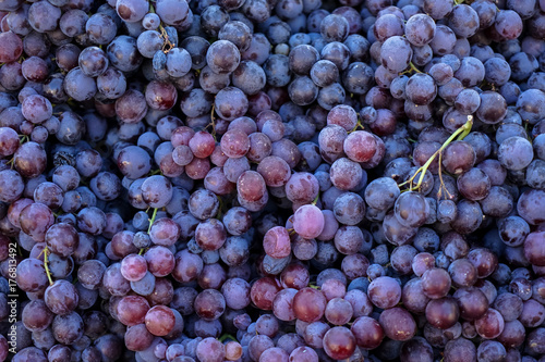 Photo Piles of delicious fresh juicy seedless red grapes background in local city frui