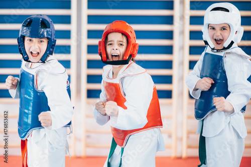Canvas Print Taekwondo Kids