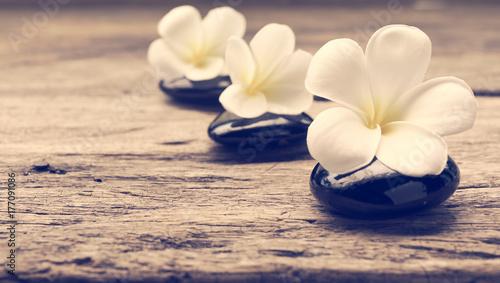 Pile of zen stones and Frangipani flower isolated on white background