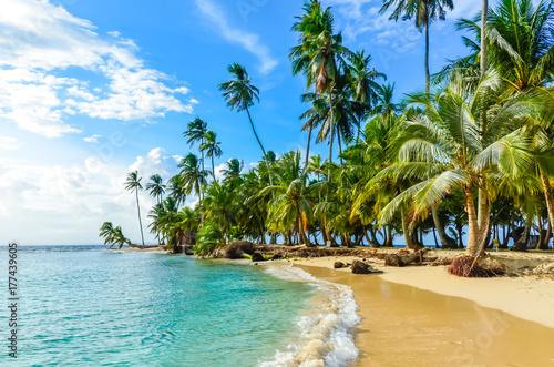 Fototapeta premium Piękna samotna plaża na karaibskiej wyspie San Blas, Kuna Yala, Panama. Turkusowe morze tropikalne, raj podróży, Ameryka Środkowa