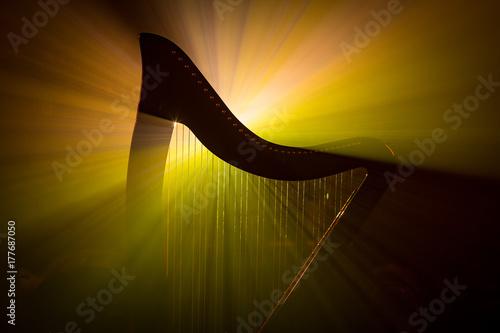 Valokuva Electro harp in the rays of light