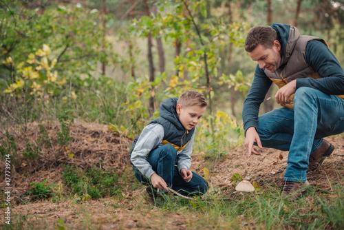 Obraz na płótnie father and son looking at mushroom
