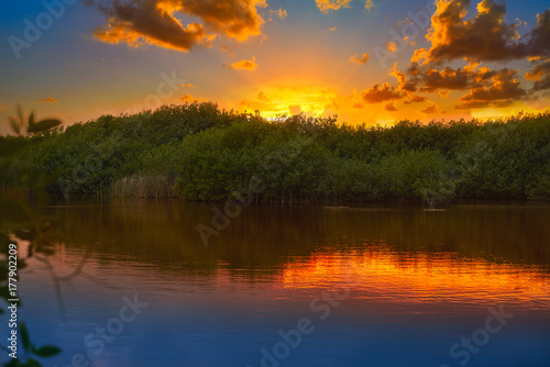 Carta da parati Mangroove sunset in Riviera Maya Mexico