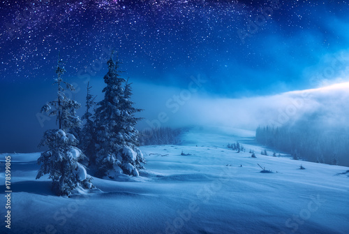 Christmas and New Year winter night