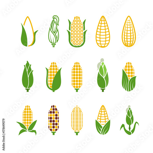 Foto Organic corn vector icons isolated on white background