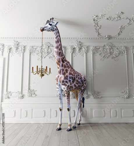 Fototapeta premium żyrafa trzyma żyrandol