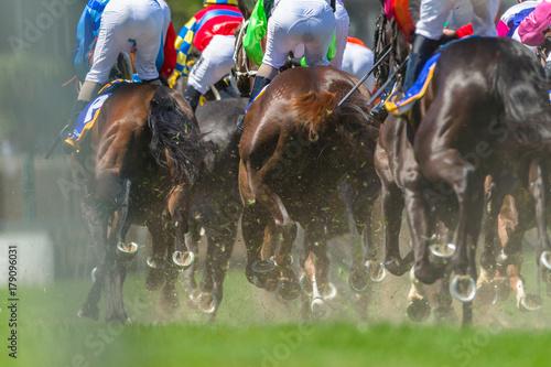Fotografie, Obraz Horse Racing Legs Hoofs