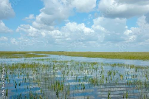 Fototapeta Vast Landscape Vista of Florida Everglades Marshland under Blue Sky