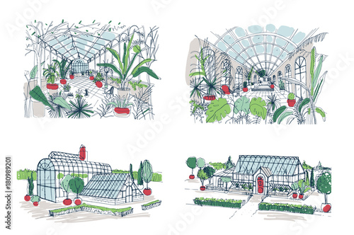 Valokuvatapetti Collection of sketches of large greenhouses full of tropical plants