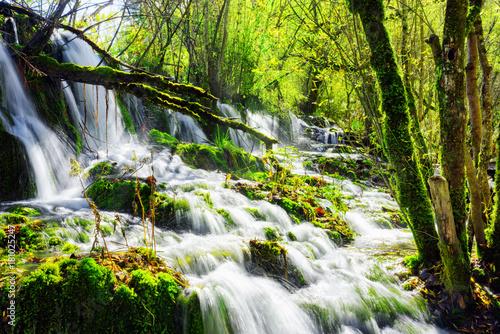 Fototapeta Niesamowity wodospad z krystalicznie czystą wodą wśród zielonych lasów do pokoju