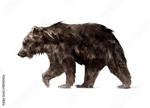 Fototapeta premium kolor pomalowany po stronie chodzącego niedźwiedzia