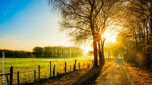 Autumn scene with rural road in the light of the rising sun