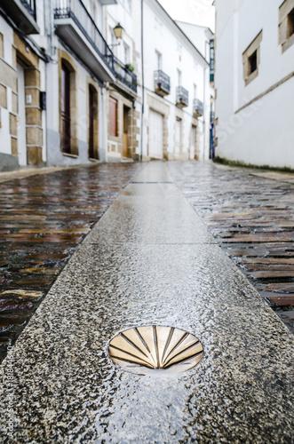 Fotomural Camino de Santiago de Compostela
