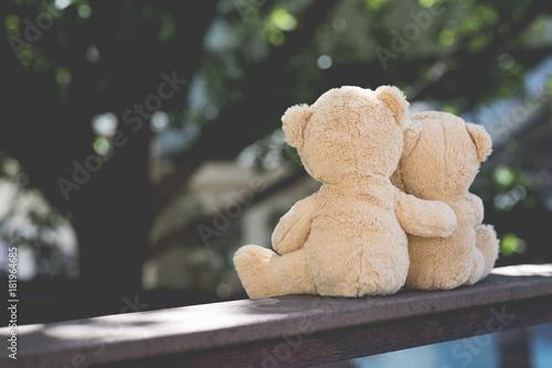 Canvas Print Teddy Bear Hug