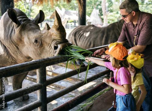 Fototapeta premium Młode dziewczyny kaukaski karmienia nosorożca w zoo