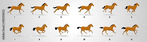 Canvas Print Horse Run cycle, Animation, Sprites, Sprites sheets, Animation frames, sequence,