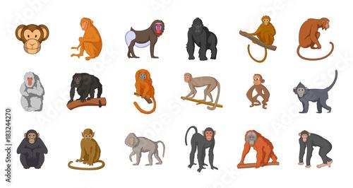 Canvas-taulu Monkey icon set, cartoon style