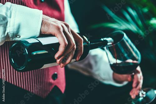 Wallpaper Mural Sommelier tasting wine