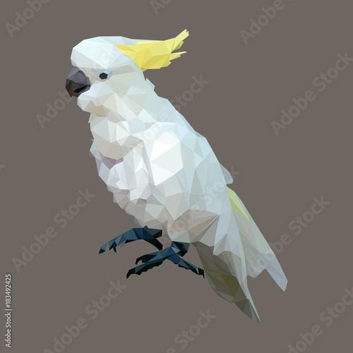 Canvas Print polygonal sulphur crested cockatoo, geometric polygon bird, isolated vector anim