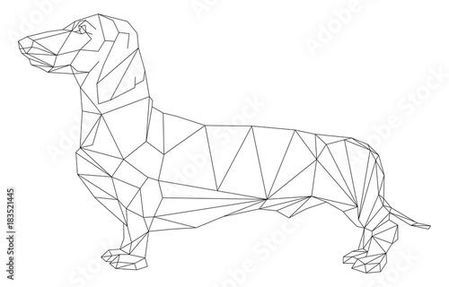 Wallpaper Mural dachshund geometric style