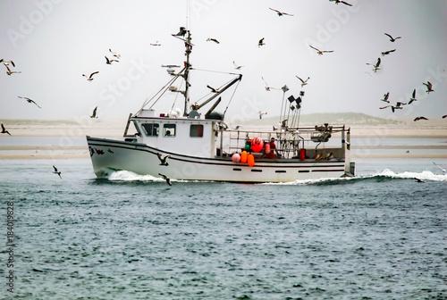 Seagulls engulf a fishing boat on the water Fototapeta