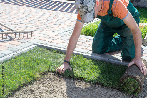 Canvastavla Natural Grass Turf Professional Installer