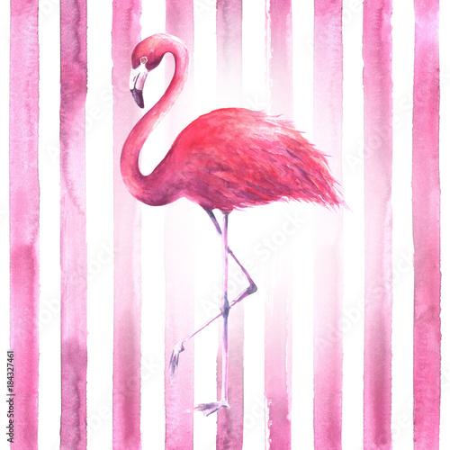 Stampa su Tela Pink flamingo on striped background