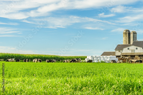 Fototapeta Amish country farm barn field agriculture in Lancaster, PA