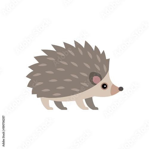 Fotografia, Obraz Vector illustration of cute hedgehog isolated on transparent background