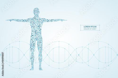 Fotografía Abstract human body with molecules DNA