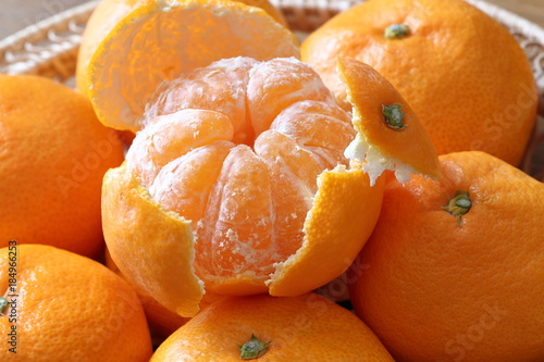 みかん Mikan(Citrus unshiu)