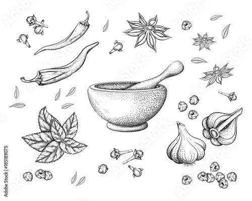 spices and herbs and mortar with pestle Fototapeta