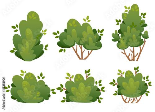 Fotografija Set of natural bush and garden trees for park cottage and yard vector illustrati