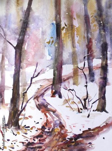 Akwarela krajobraz. W lesie spadł pierwszy śnieg