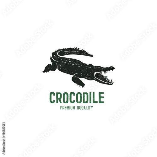 Wallpaper Mural crocodile logo template