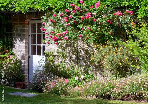 Fototapeta premium Mały ogród kwiatowy i róża na fasadzie domu