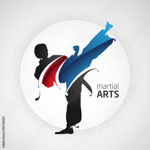 Wallpaper Mural karate kick silhouette splash martial arts