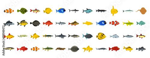 Canvas Print Fish icon set, flat style