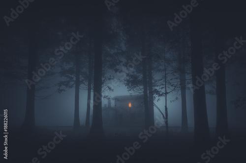 Fototapeta premium straszny dom w tajemniczym lesie horroru w nocy