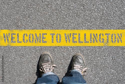 Ein Mann steht vor Wellington in Neuseeland
