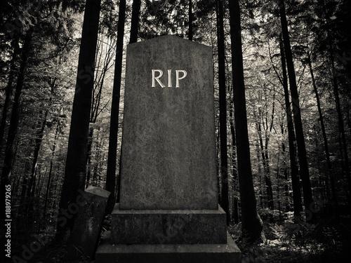 Valokuva Spooky Forest Gravestone